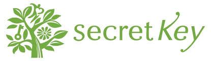 Secret Key логотип