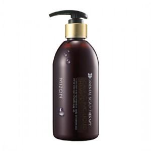 MIZON Лечебный шампунь против выпадения и ломкости волос, стимулирующий рост волос - MIZON Scalp Clinic Liquid Shampoo